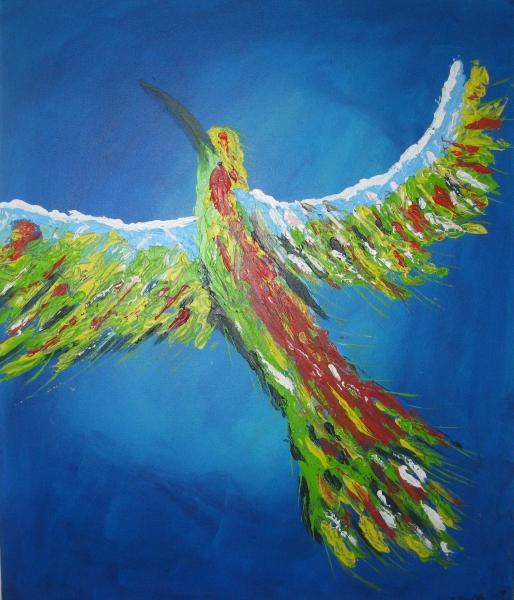 Kolibri-50-x-60