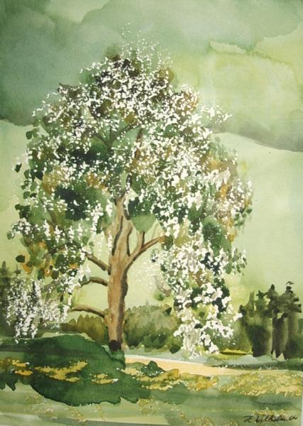 Frühlingsbaum 28 x 20  Aquarell