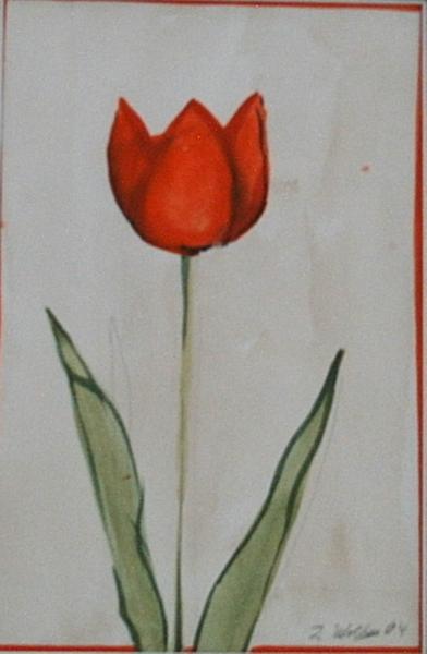 Tulpen Triologie 14  x 20 Aquarell