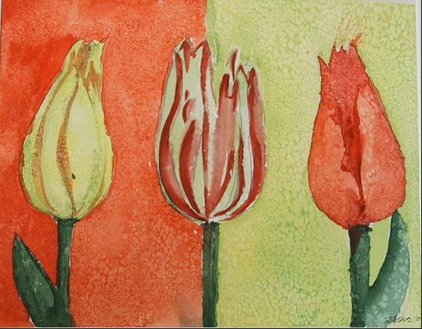 Tulpen geschlossen in Salz 32 x 24 Aquarell