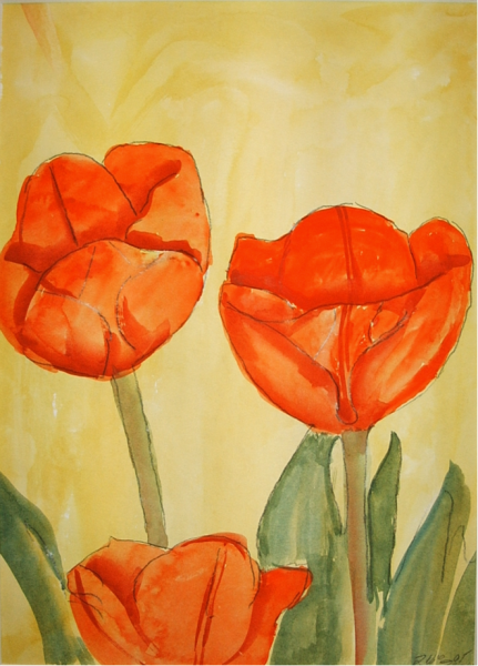 Tulpen in Rot 38  x 26 Aquarell