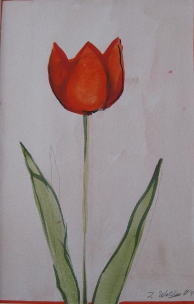 Tulpen trioll 1