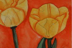 Tulpen in Gelb 38  x 26 Aquarell
